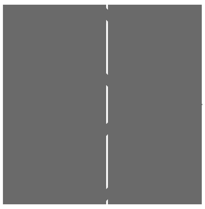 logo - cinza transparente